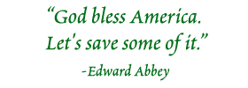God bless America. Let's save some of it. - Edward Abbey