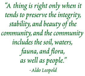 A thing is right only when it tends to preserve the integrity, stability, and beauty of the community, and the community includes the soil, waters, fauna, and flora, as well as people. -Aldo Leopold