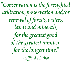 Conservation  is the foresighted utilization, preservation and/or renewal of forests, waters, lands and minerals, for the greatest good of the greatest number for the longest time. - Gifford Pinchot